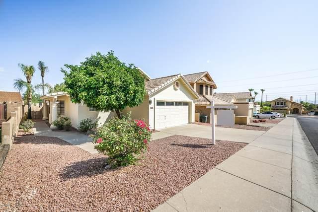 1506 E Renee Drive, Phoenix, AZ 85024 (MLS #6134627) :: Lucido Agency