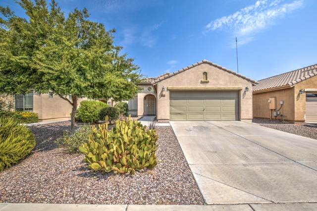 1152 W Desert Seasons Drive, San Tan Valley, AZ 85143 (MLS #6134639) :: Selling AZ Homes Team