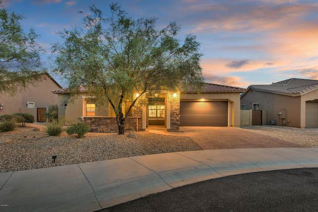 18379 W Desert Trumpet Road, Goodyear, AZ 85338 (MLS #6134648) :: Conway Real Estate