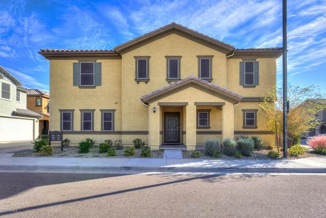 1161 N 163RD Lane, Goodyear, AZ 85338 (MLS #6134652) :: The Property Partners at eXp Realty
