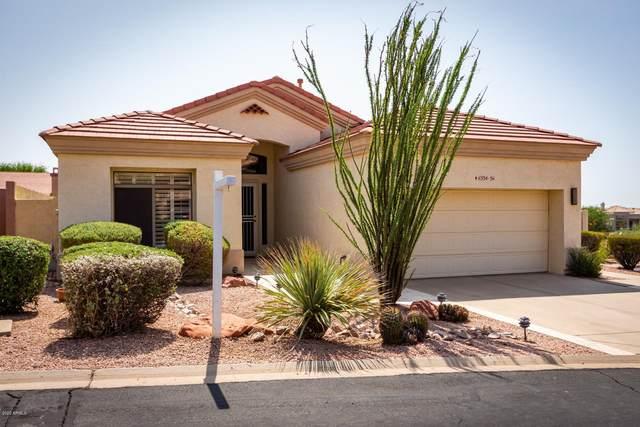 6334 E Viewmont Drive #56, Mesa, AZ 85215 (MLS #6134665) :: Sheli Stoddart Team | M.A.Z. Realty Professionals