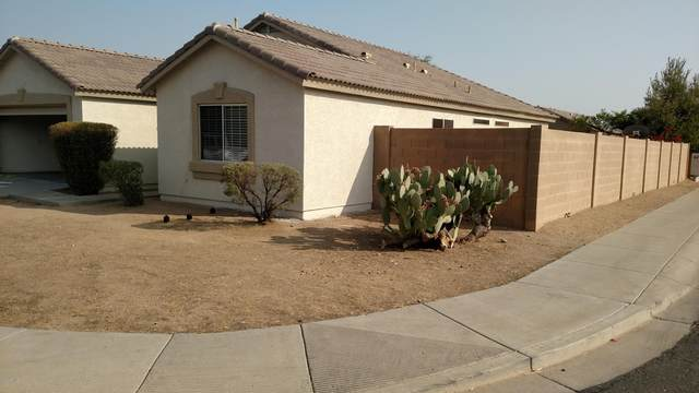12521 W Dreyfus Drive, El Mirage, AZ 85335 (MLS #6134674) :: Brett Tanner Home Selling Team