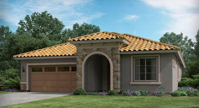 24914 N 172ND Drive, Surprise, AZ 85387 (MLS #6134679) :: Brett Tanner Home Selling Team