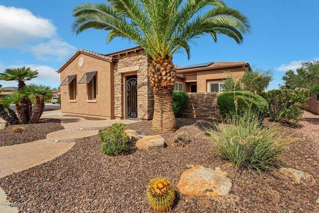 28431 N 130TH Drive, Peoria, AZ 85383 (MLS #6134687) :: Long Realty West Valley