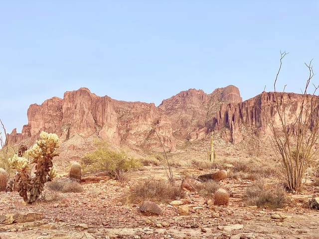 3500 N Val Vista Road, Apache Junction, AZ 85119 (MLS #6134695) :: Lucido Agency