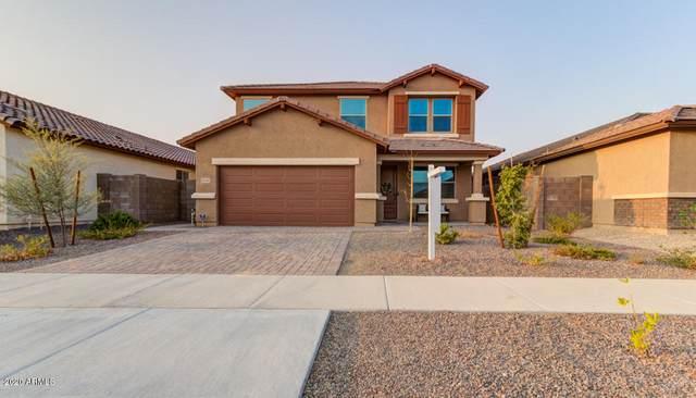 18356 W Ida Lane, Surprise, AZ 85387 (MLS #6134711) :: RE/MAX Desert Showcase