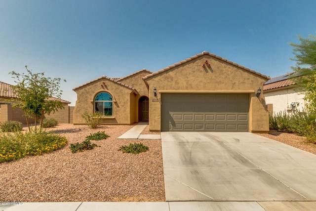 27704 N 175TH Drive, Surprise, AZ 85387 (MLS #6134718) :: Brett Tanner Home Selling Team