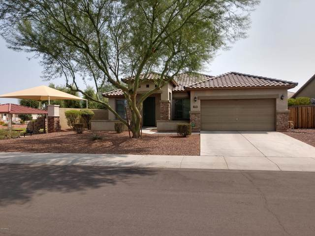 1813 N 114TH Avenue, Avondale, AZ 85392 (MLS #6134728) :: Brett Tanner Home Selling Team