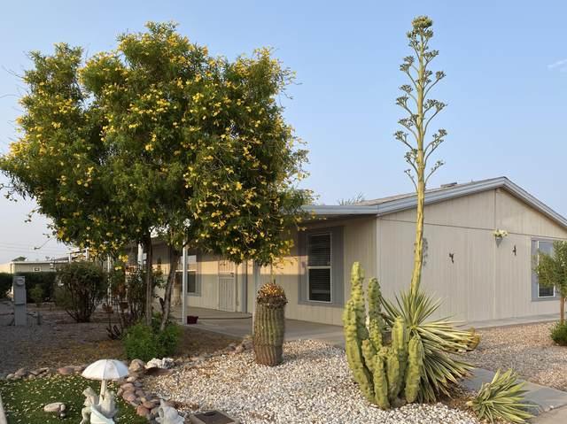 457 E Germann Road #115, San Tan Valley, AZ 85140 (MLS #6134799) :: Selling AZ Homes Team