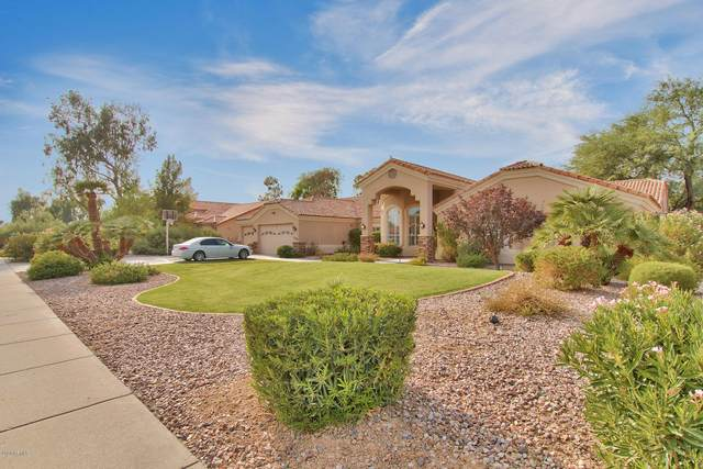 11094 E Sorrel Lane, Scottsdale, AZ 85259 (MLS #6134806) :: RE/MAX Desert Showcase
