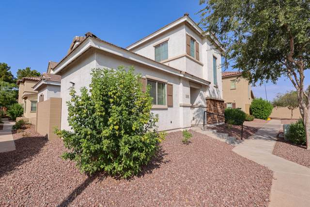 4774 E Laurel Court, Gilbert, AZ 85234 (MLS #6134824) :: Balboa Realty