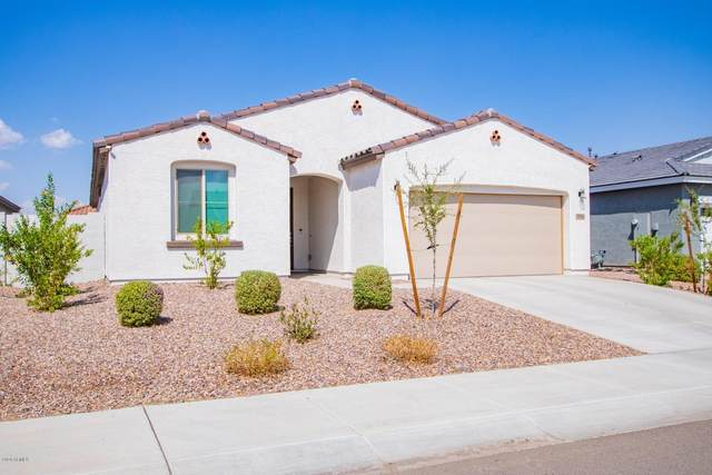 19904 W Moonlight Path, Buckeye, AZ 85326 (MLS #6134852) :: Howe Realty
