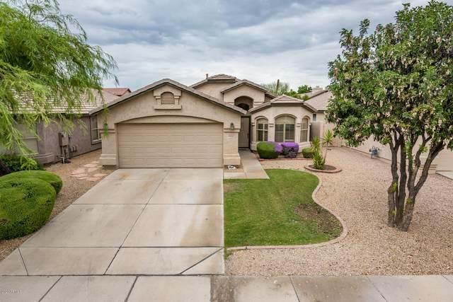 4326 E Abraham Lane, Phoenix, AZ 85050 (MLS #6134880) :: My Home Group