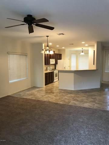 1271 W Desert Valley Drive, San Tan Valley, AZ 85143 (MLS #6134914) :: Klaus Team Real Estate Solutions
