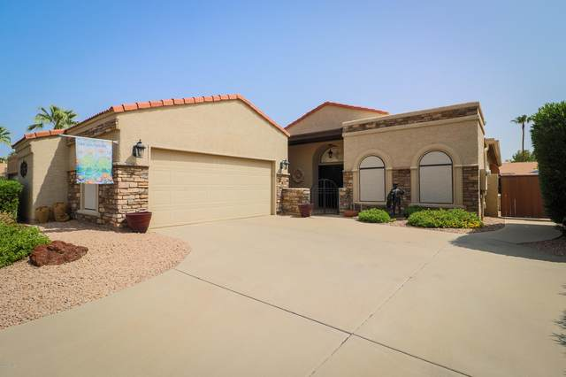 25251 S Cloverland Drive, Sun Lakes, AZ 85248 (MLS #6134953) :: The Daniel Montez Real Estate Group