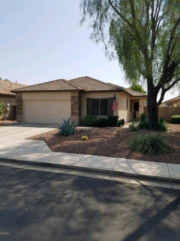 12851 W Glenrosa Drive, Litchfield Park, AZ 85340 (MLS #6134963) :: Nate Martinez Team
