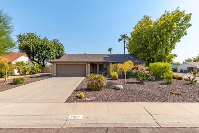 6409 E Grandview Drive, Scottsdale, AZ 85254 (MLS #6134995) :: My Home Group