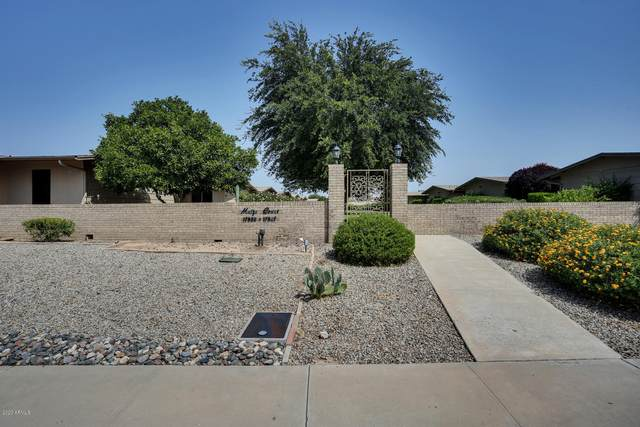 17611 N 102nd Drive, Sun City, AZ 85373 (MLS #6135002) :: The Daniel Montez Real Estate Group
