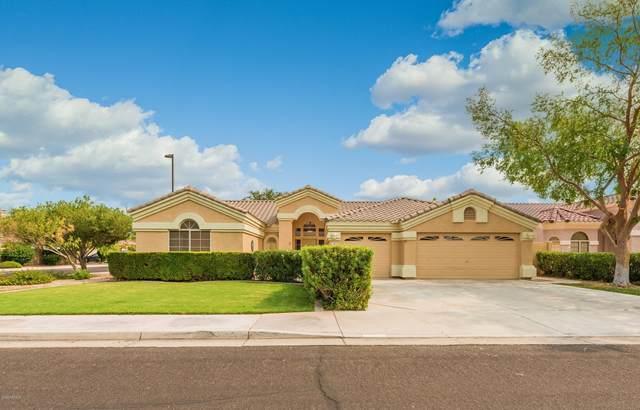 1479 S Cholla Street, Gilbert, AZ 85233 (MLS #6135009) :: Conway Real Estate