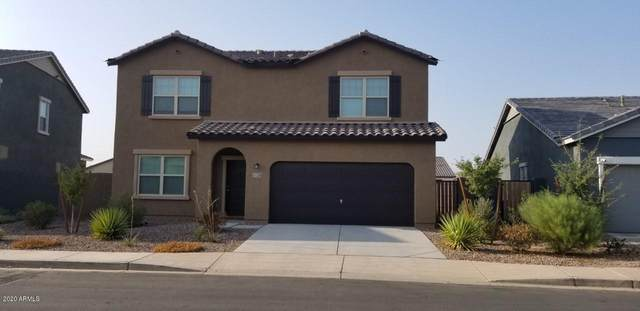 37224 W Cannataro Lane, Maricopa, AZ 85138 (MLS #6135053) :: The Daniel Montez Real Estate Group