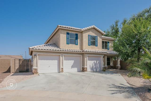 9087 S 253RD Drive, Buckeye, AZ 85326 (MLS #6135084) :: The Property Partners at eXp Realty