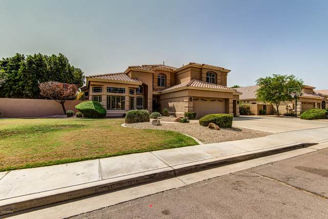 6261 W Corona Drive, Chandler, AZ 85226 (MLS #6135089) :: Dijkstra & Co.