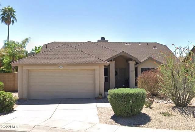3831 E Betty Elyse Lane, Phoenix, AZ 85032 (MLS #6135092) :: Dave Fernandez Team | HomeSmart