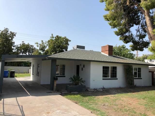 3111 E Oak Street, Phoenix, AZ 85008 (MLS #6135100) :: Yost Realty Group at RE/MAX Casa Grande