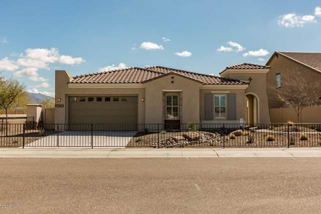 30825 N 128TH Drive, Peoria, AZ 85383 (MLS #6135117) :: The Daniel Montez Real Estate Group
