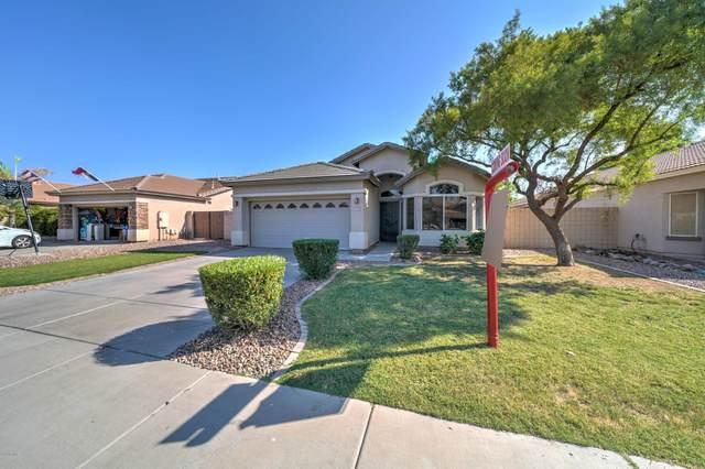 3733 E Waterman Street, Gilbert, AZ 85297 (MLS #6135125) :: Arizona Home Group