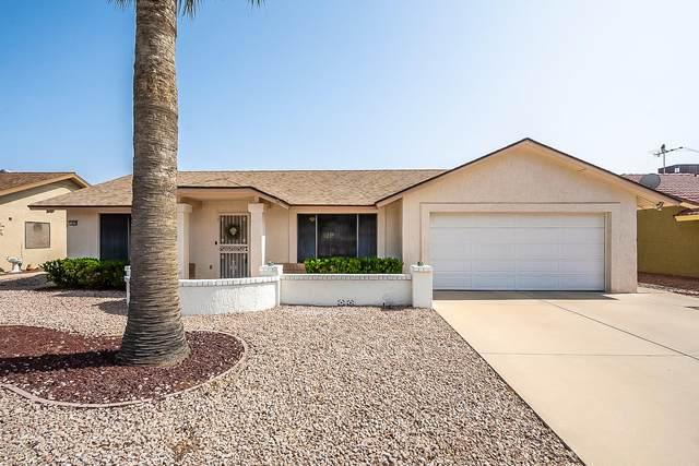 13835 W Pinetree Drive, Sun City West, AZ 85375 (MLS #6135131) :: My Home Group