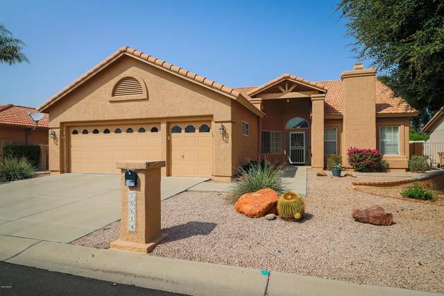 10614 E Cedar Waxwing Drive, Sun Lakes, AZ 85248 (MLS #6135135) :: The Ellens Team