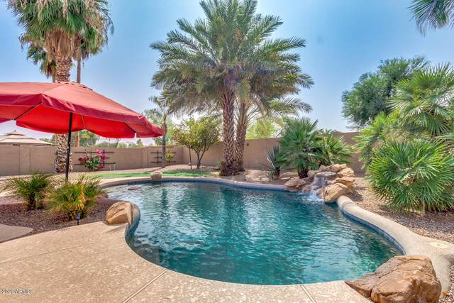 21227 E Avenida Del Valle, Queen Creek, AZ 85142 (MLS #6135146) :: The Daniel Montez Real Estate Group