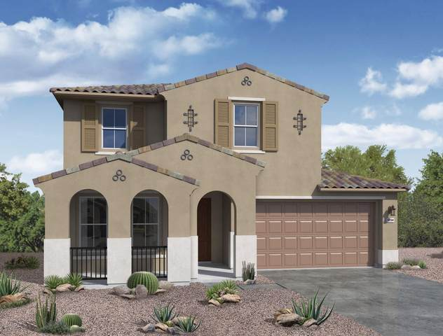 11386 W Nadine Way, Peoria, AZ 85383 (MLS #6135147) :: Lucido Agency