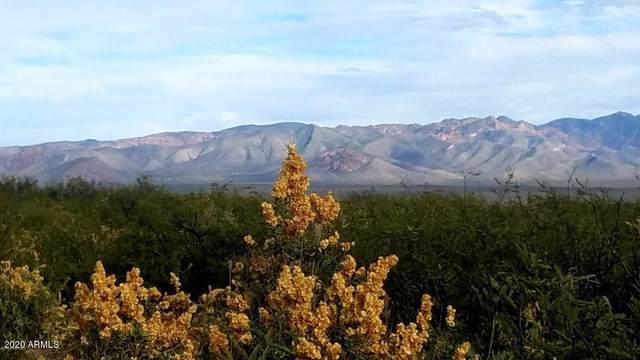 TBD E Canada Drive, Sierra Vista, AZ 85650 (MLS #6135171) :: Service First Realty