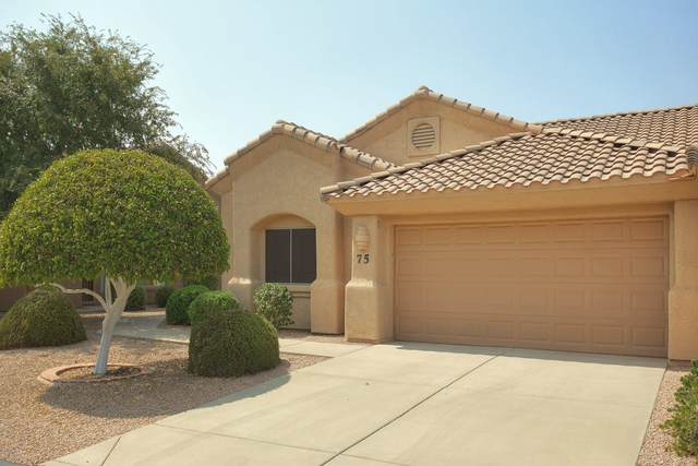4202 E Broadway Road #75, Mesa, AZ 85206 (MLS #6135180) :: Yost Realty Group at RE/MAX Casa Grande