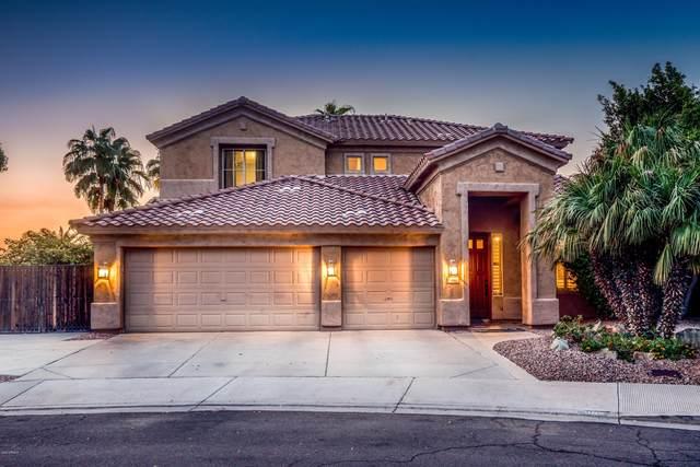 392 N Ashley Drive, Chandler, AZ 85225 (MLS #6135231) :: Dijkstra & Co.