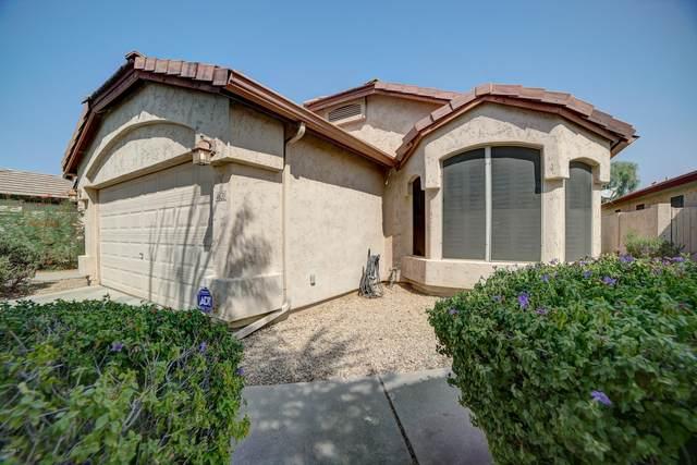 4620 E Melinda Lane, Phoenix, AZ 85050 (MLS #6135235) :: My Home Group