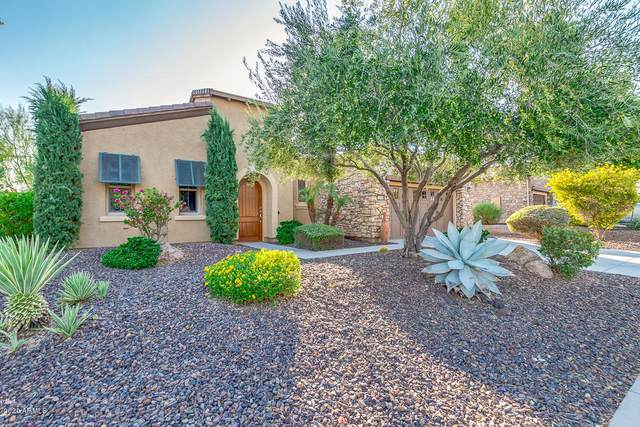 12969 W Plum Road, Peoria, AZ 85383 (MLS #6135240) :: Brett Tanner Home Selling Team