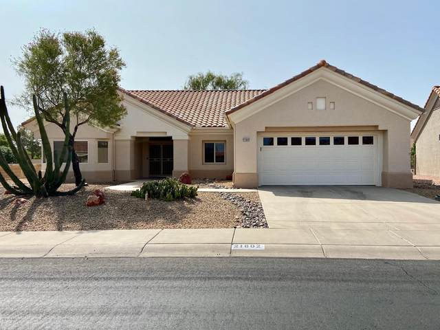 21802 N Montego Drive, Sun City West, AZ 85375 (MLS #6135331) :: The Daniel Montez Real Estate Group