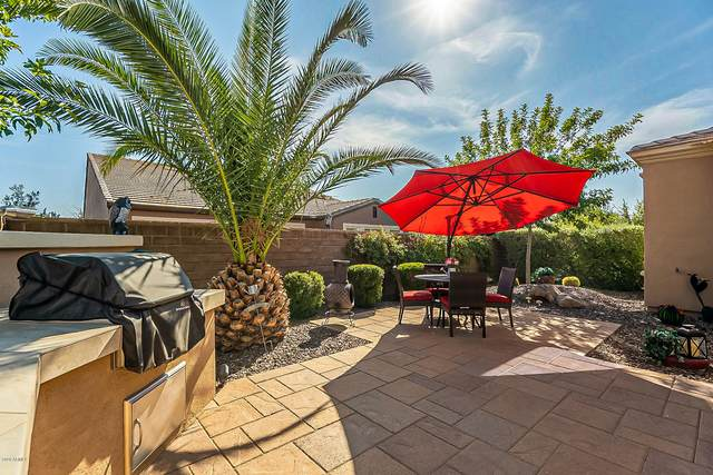 1805 E Maygrass Lane, Queen Creek, AZ 85140 (MLS #6135337) :: Lucido Agency