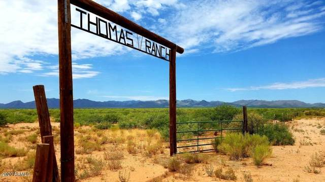 TBD N Frontier Road, McNeal, AZ 85617 (MLS #6135363) :: The Bill and Cindy Flowers Team