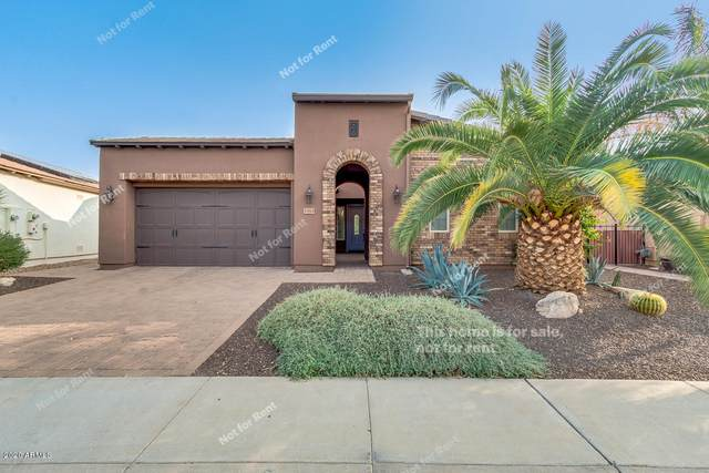1585 E Sattoo Way, San Tan Valley, AZ 85140 (MLS #6135365) :: Sheli Stoddart Team | M.A.Z. Realty Professionals