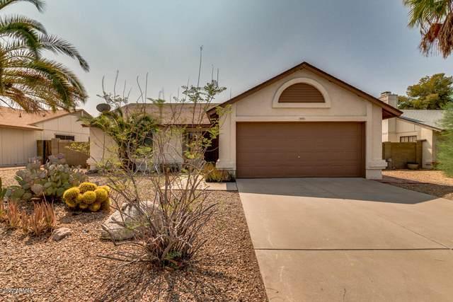 3123 W Irma Lane, Phoenix, AZ 85027 (MLS #6135370) :: The Laughton Team