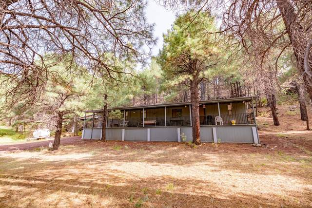 3715 Happy Trails Drive, Flagstaff, AZ 86001 (MLS #6135390) :: Conway Real Estate