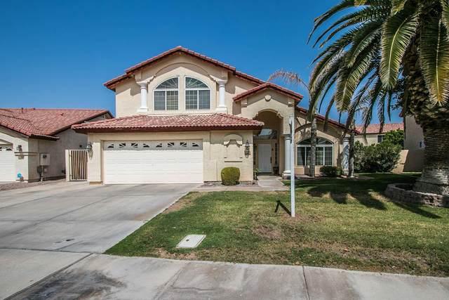 11332 W Primrose Drive, Avondale, AZ 85392 (MLS #6135429) :: Brett Tanner Home Selling Team