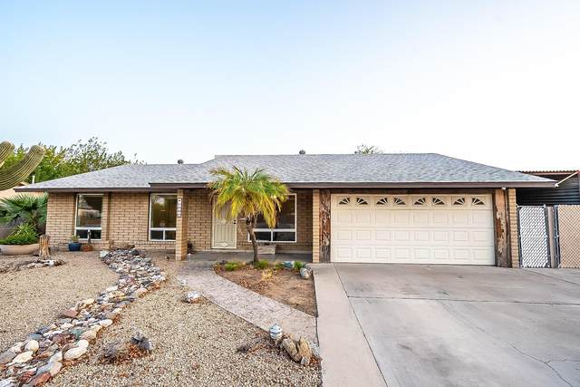 1509 W Villa Maria Drive, Phoenix, AZ 85023 (MLS #6135453) :: Budwig Team | Realty ONE Group