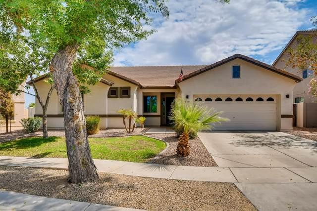 7809 S 18TH Way, Phoenix, AZ 85042 (MLS #6135457) :: The Luna Team