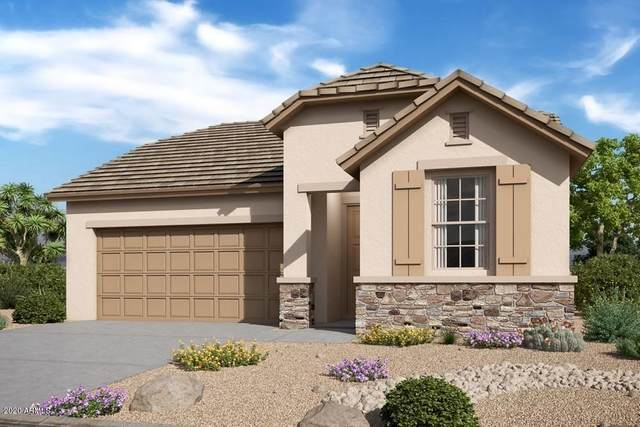 20269 N 107TH Lane, Sun City, AZ 85373 (MLS #6135534) :: The Daniel Montez Real Estate Group