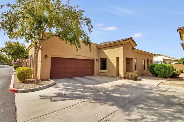 295 N Rural Road #133, Chandler, AZ 85226 (MLS #6135551) :: The Daniel Montez Real Estate Group